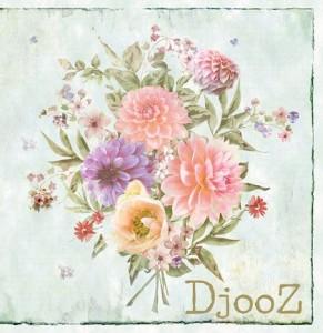 DJOOZ 2