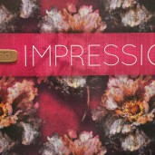 Murogro  Impression  2015