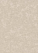 1763-14 Шпалери Erismann Cassiopeia Німеччина