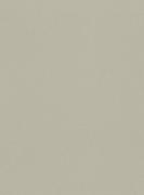 612066  Шпалери GLOBE Rasch Німеччина